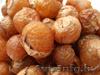 мыльные орехи- натуральный 100% продукт